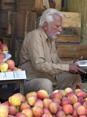 7541848-Fruit_shop_Jodhpur.jpg