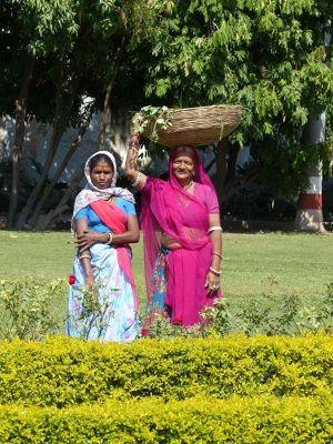 7553527-In_Sahelion_Ki_Bari_Udaipur.jpg