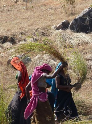 7553657-Threshing_Udaipur.jpg