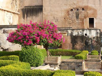 7554353-Bundi_Palace_hanging_garden_Bundi.jpg