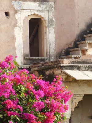 7554354-Bundi_Palace_hanging_garden_Bundi.jpg