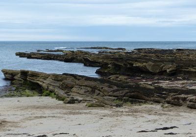 7669718-Beadnell_Beach_.jpg