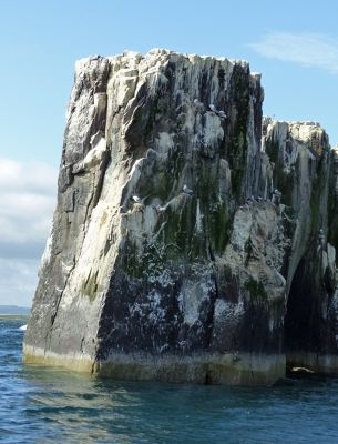 7670453-Staple_Island_and_the_Pinnacles_.jpg