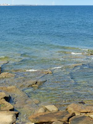 7681822-Rocky_shore_Seaton_Sluice.jpg
