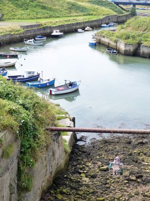 7681832-The_Cut_and_harbour_Seaton_Sluice.jpg