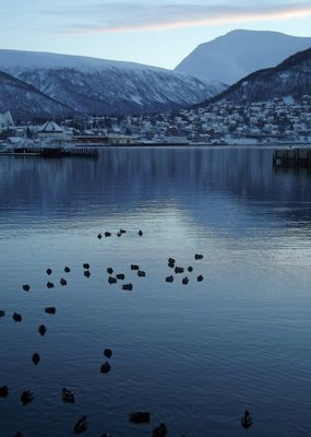 Tromso_002.jpg