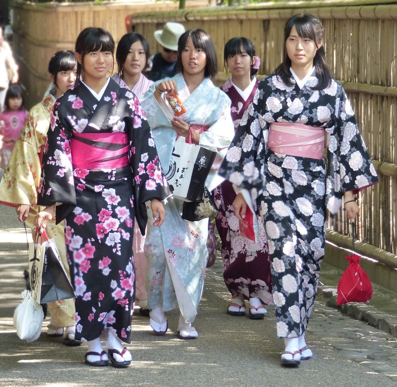 large_143558826916359-On_the_path_..rove_Kyoto.jpg