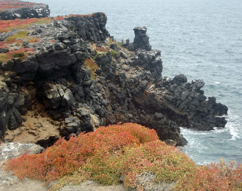 Cliffs of Plaza Sur - Galápagos Islands