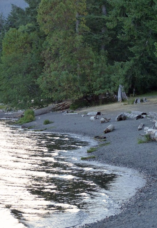 Morning on the shores of Lake Crescent