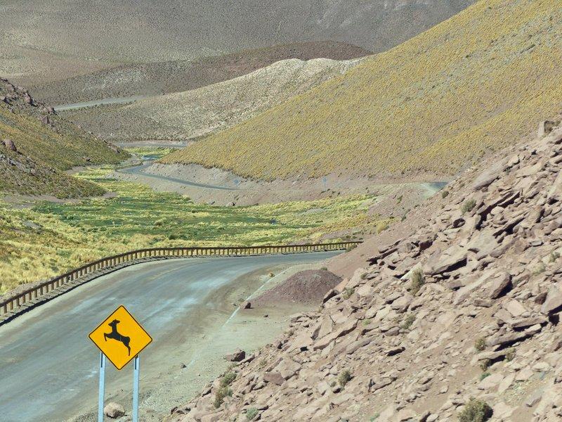 Road through the Atacama