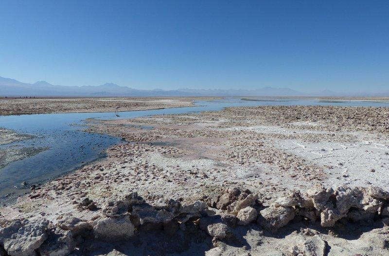 large_4_7_Atacam.._de_Atacama.jpg