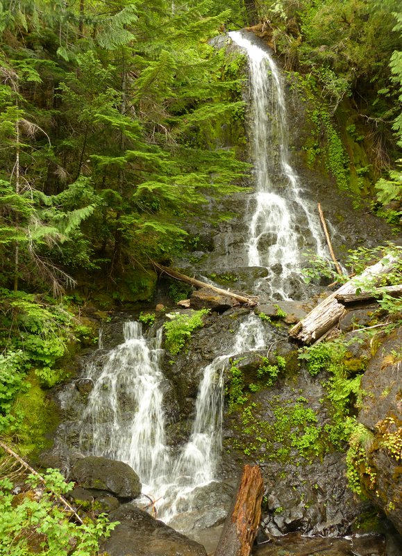Falls Creek, Mount Rainier NP