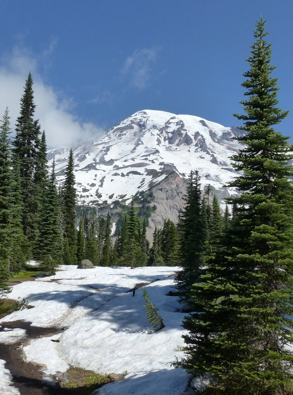 On the Nisqually Vista trail, Mount Rainier NP