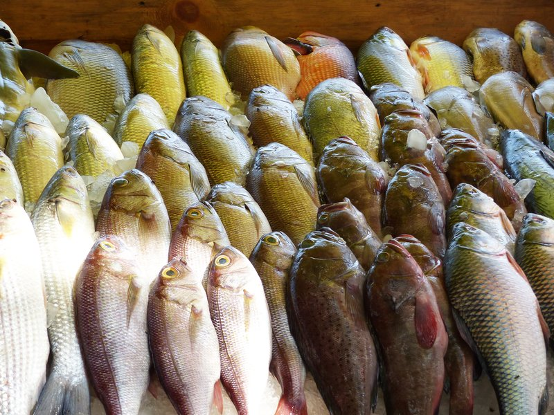Fish for sale, Fort Cochin fish stall