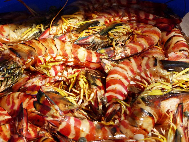 Jumbo shrimp, Fort Cochin fish stall