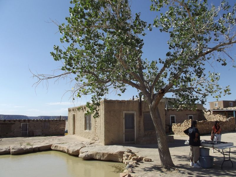 large_5914882-Cistern_and_lone_tree_Acoma_Pueblo.jpg