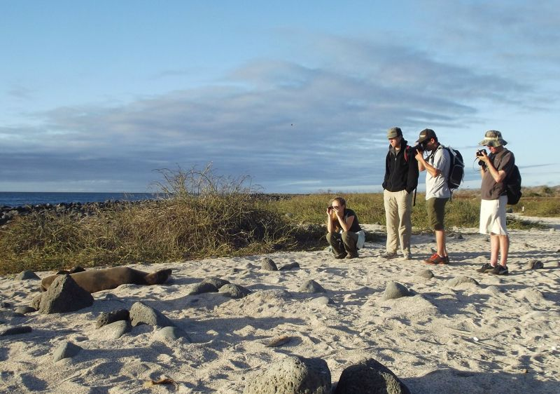 large_6444774-On_the_beach_Galapagos_Islands.jpg
