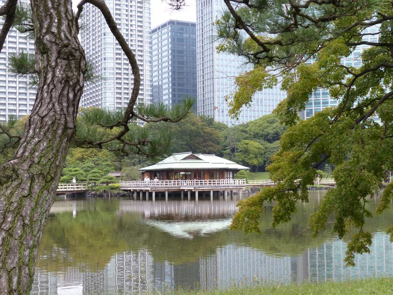 large_6877376-Tea_house_Hamarikyu_Japan.jpg