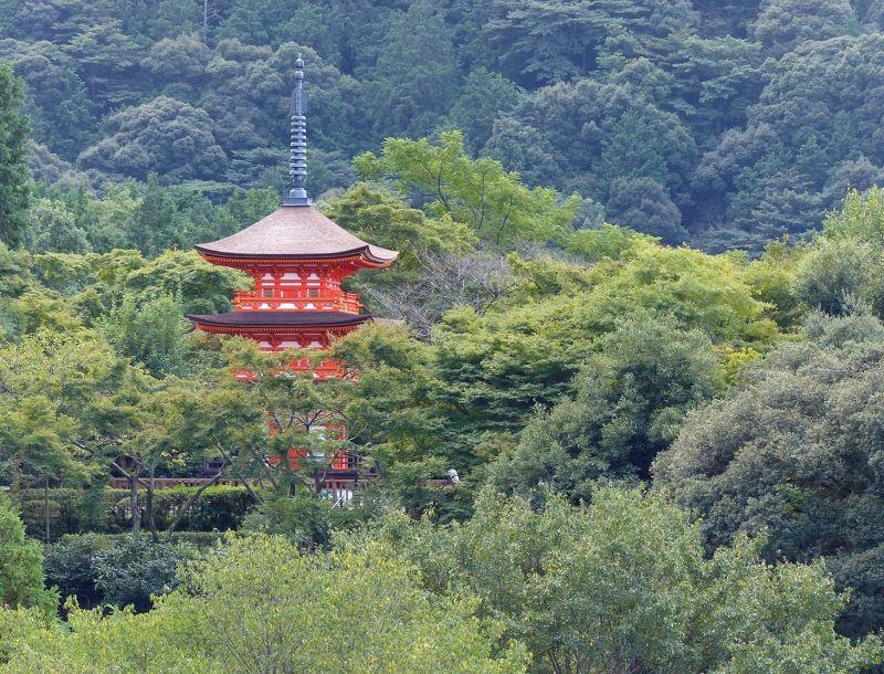Pagoda - Kyoto