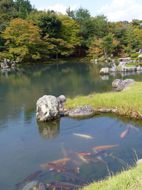 Tenryu-ji - Kyoto