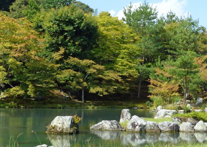large_6916346-_Kyoto.jpg