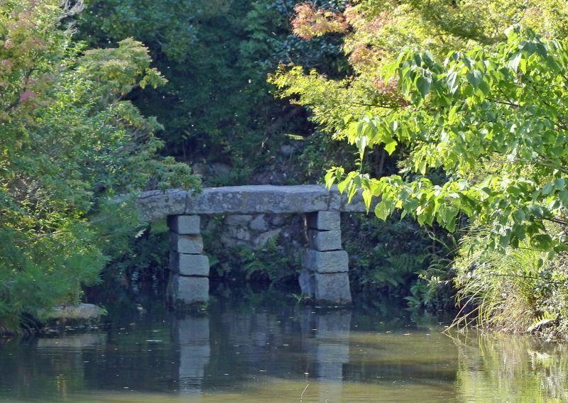 Kyoyochi Pond - Kyoto