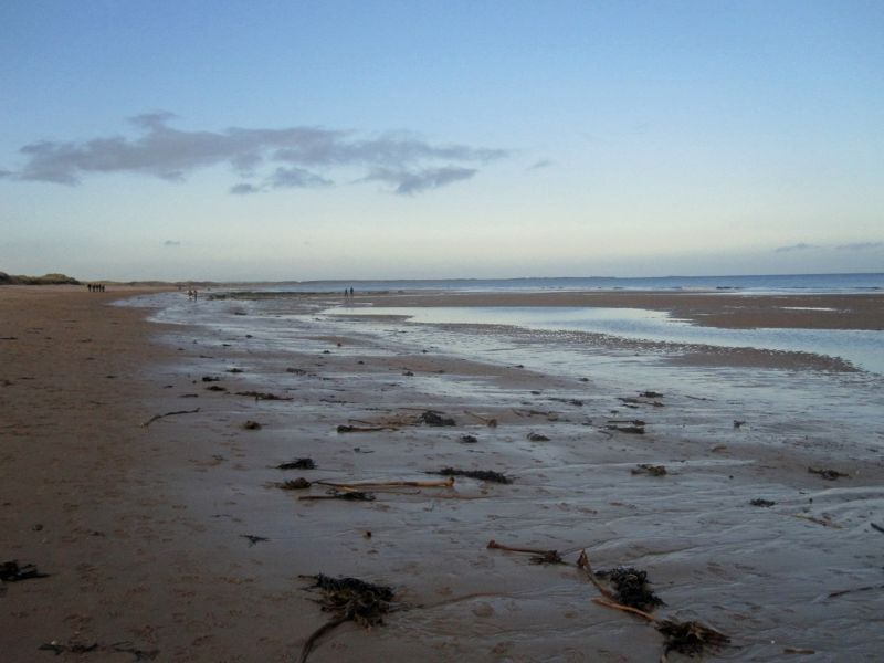 large_7287018-Looking_north_Druridge_Bay.jpg