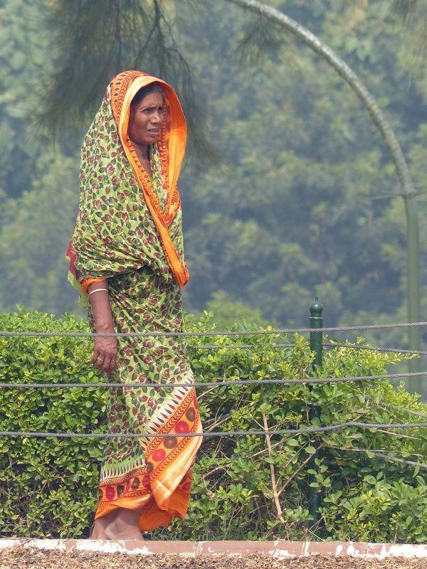 Indian visitor to Raj Ghat - Delhi