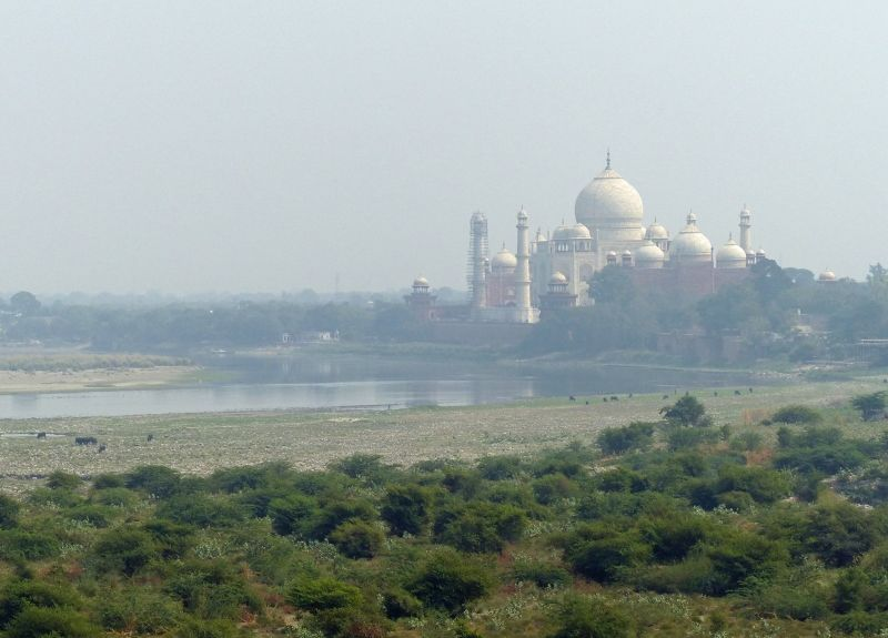 View of the Taj from Agra Fort - Agra