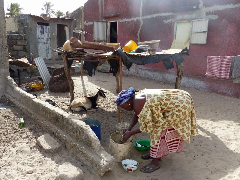 large_7577769-Cheikhs_mother_in_law_Djifere.jpg