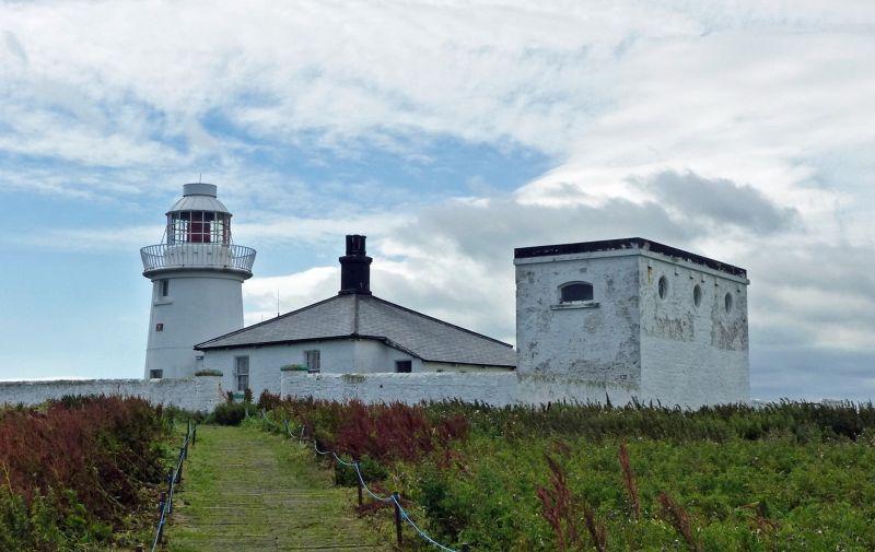 large_7670489-Inner_Farne_the_lighthouse.jpg