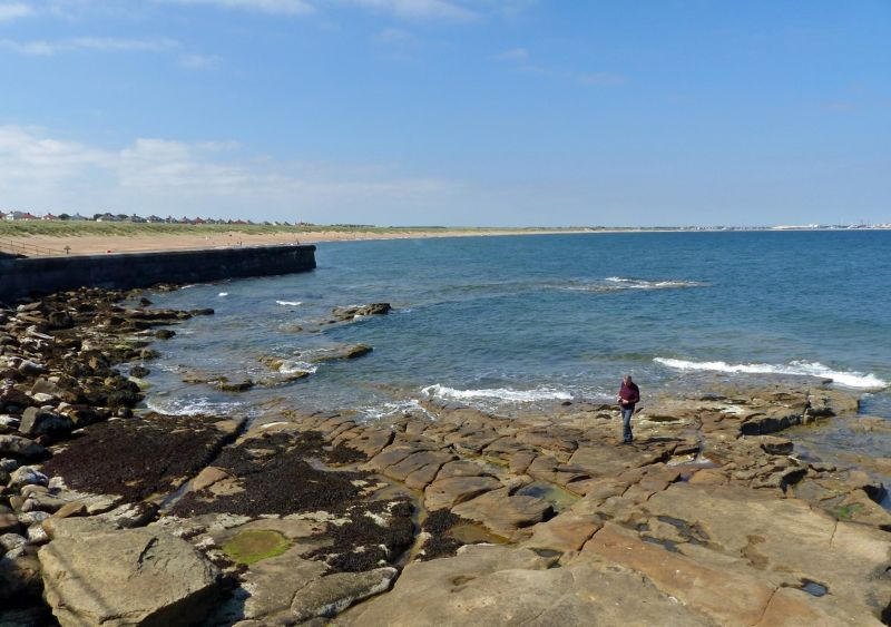 large_7681823-On_the_rocks_Seaton_Sluice.jpg