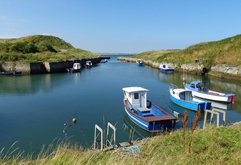 large_7681835-The_Harbour.jpg