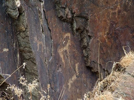 large_809385023650385-Petroglyphs_..ert_Nurata.jpg