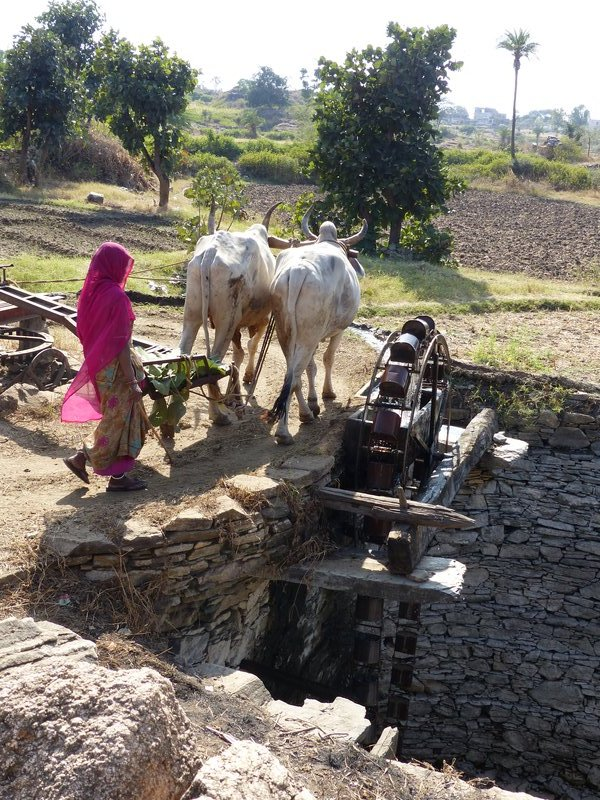 Waterwheel near Udaipur