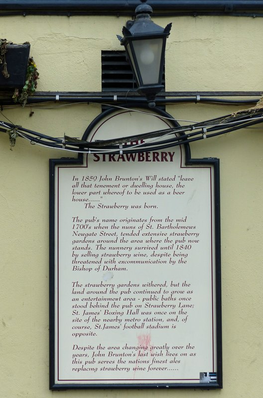 Strawberry pub, St James' Park, Newcastle