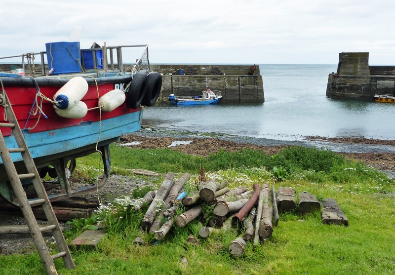 The harbour, Craster