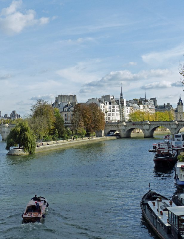 Ile de la Cite from the Pont des Arts
