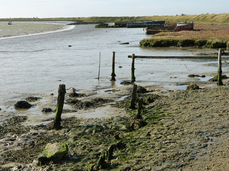 By the river in Orford