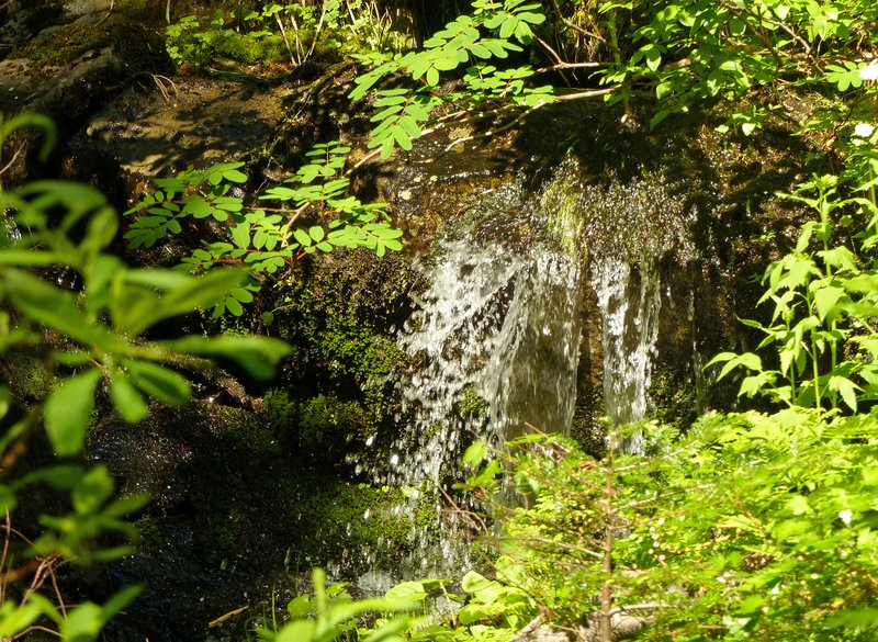On the trail to Rainy Lake, N Cascades NP