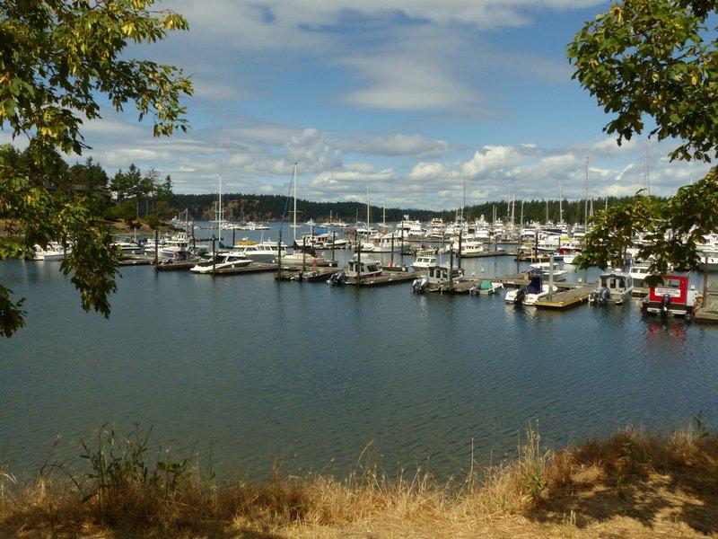Marina at Roche Harbor