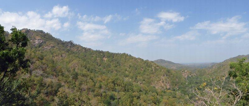 large_Ranakpur_35.jpg