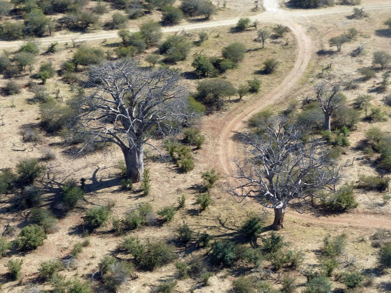Helicopter flight above Victoria Falls - in the national park
