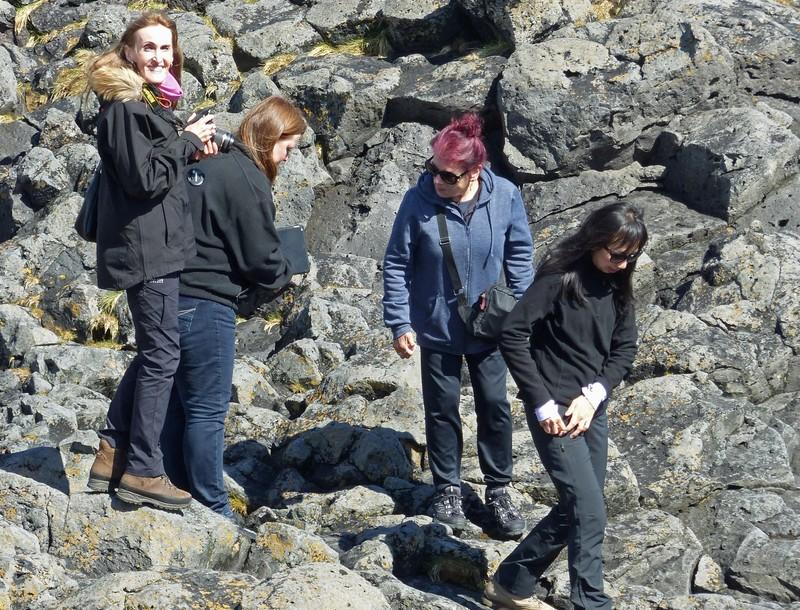 VTers on the rocks at Arnarstapi