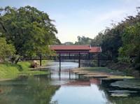 River scene, Siem Reap