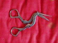 3642610-Scissors_shaped_like_a_stork_Bukhara.jpg