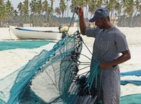 Mending the nets on Al Haffa beach