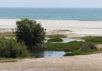 A'Dahariz beach