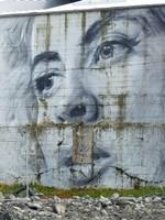 Street art by Guido van Helten