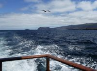 6444943-At_sea_Galapagos_Islands.jpg